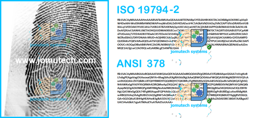 Fingerprint Image Converted to ISO and ANSI Fingerprint Template Data Format