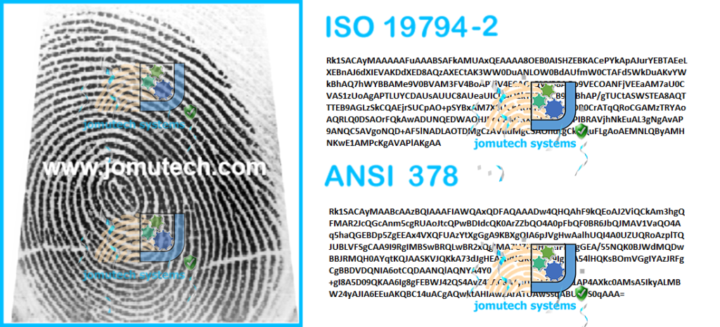 Fingerprint Image Converted to ANSI and ISO Fingerprint Template Data Format